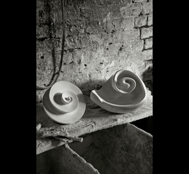 Plaster sculptures - spiral and shell